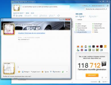 ���� Windows Live Messenger 2011 Beta �������� �������